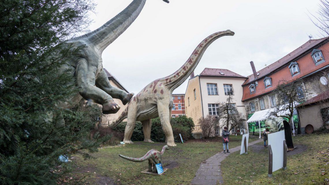 Oberfränkische Dinos erleben
